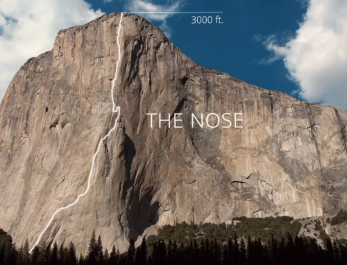 "60 ANNI DI ""THE NOSE"" parte I"